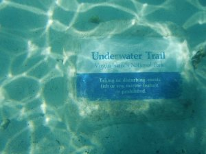 Underwater Snorkel Trail head