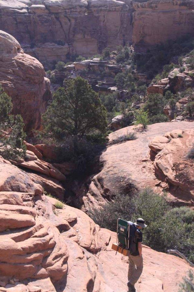 Down into Elephant Canyon.