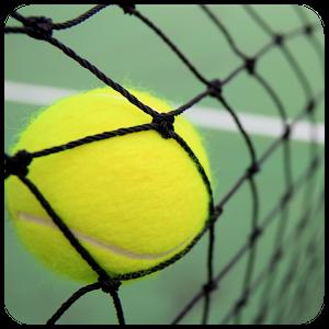 tennisballnet