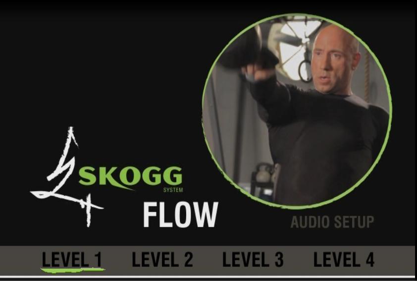skogg kettlebell system review