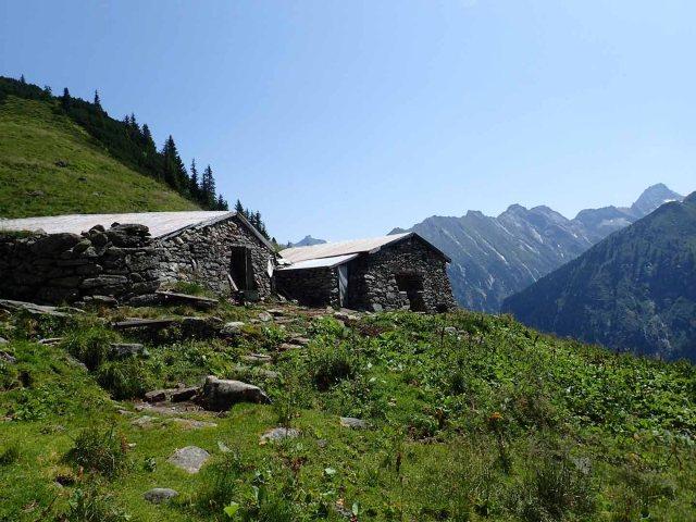 shelter for livestock
